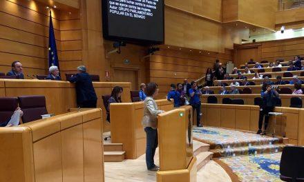 Severa González propone un gran Pacto de Estado para luchar contra la Violencia de Género.